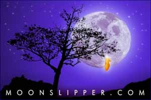 moonslipper.com